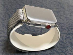 これがApple Watch Series3、ステンレススチールモデル!