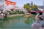 京都桜の名所おすすめ散策路!哲学の道の穴場から十石船めぐりまで