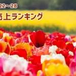 2017/5/22~28 スマホ売上ランキング 初登場XperiaXZsの順位は?