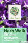 Herb ID Walk