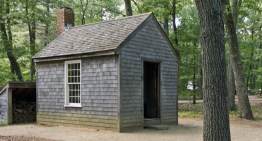 How To Build a Thoreau Cabin For Under $1,000