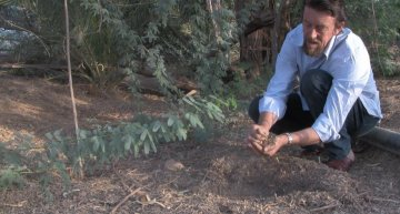 This Man Greened A Desert – Imagine What You Could Do With Your Own Backyard