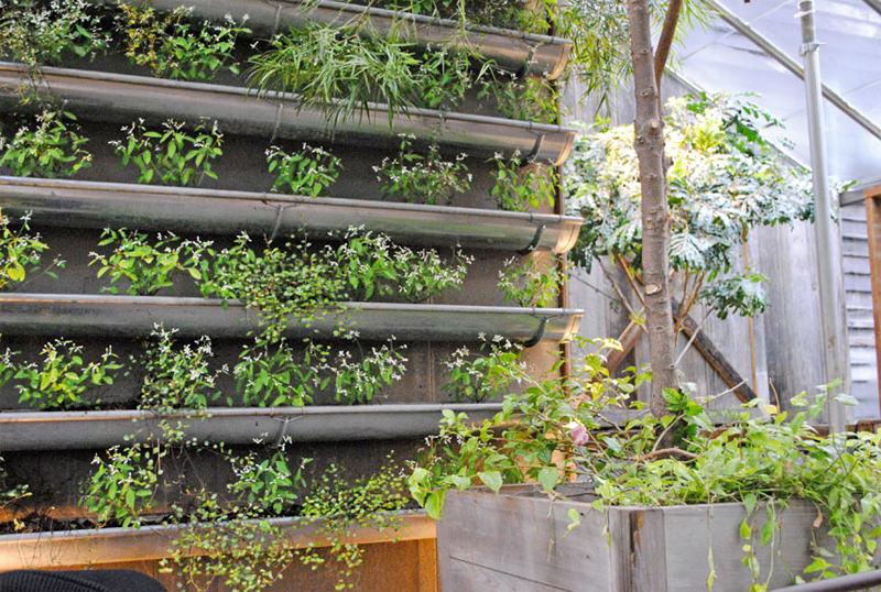 Gutter Vertical Garden