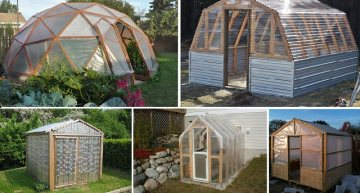 10 Easy DIY Greenhouse Plans (They're Free!)