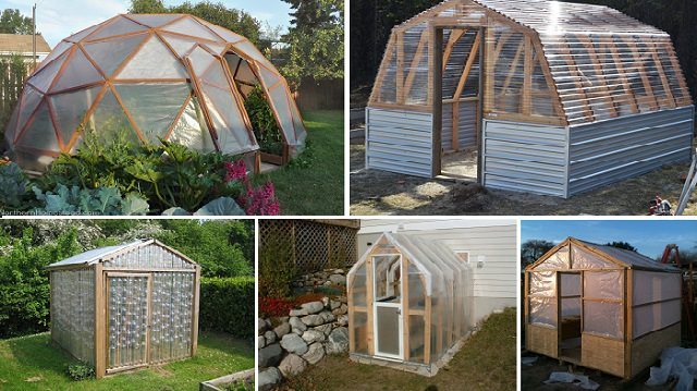 10 Easy DIY Greenhouse Plans (Theyu0027re Free!)