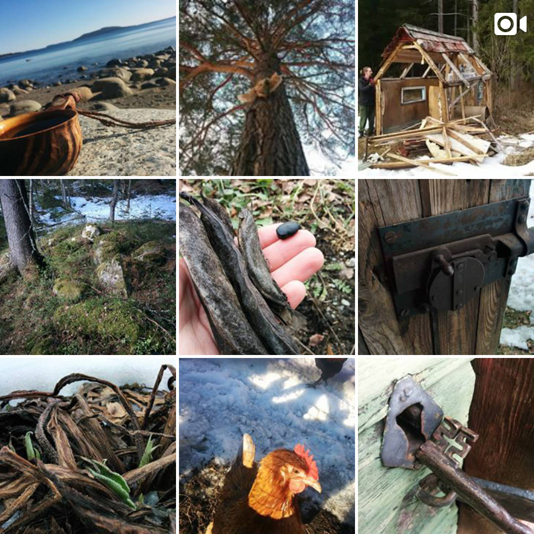 Walden Labs on Instagram