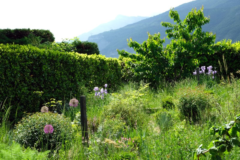 Walden Paysage Jardin Experimental Vif Grenoble