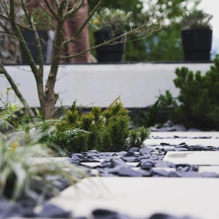Walden Paysage Jardin La Tronche