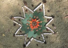 Ein sternförmiges Mandala umrahmt von kleinen Birkenstöcken und Kienzapfen. Im Inneren liegen Blätter. Auf den Blättern liegen Eichelhütchen und rote Früchte im Kreis.