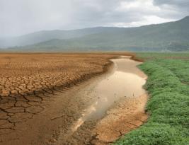 El Derecho para el cambio climático