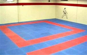 Martial Arts Mats FREE!
