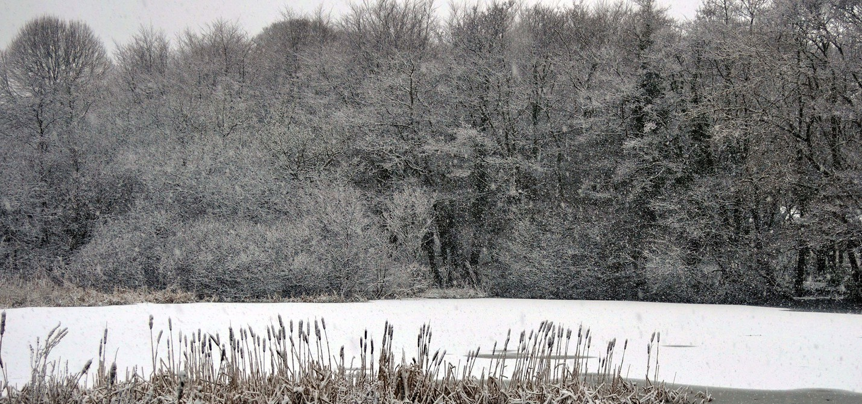 snow_clive_OrieltonPond