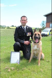 Dog handlers praised for saving missing woman's life