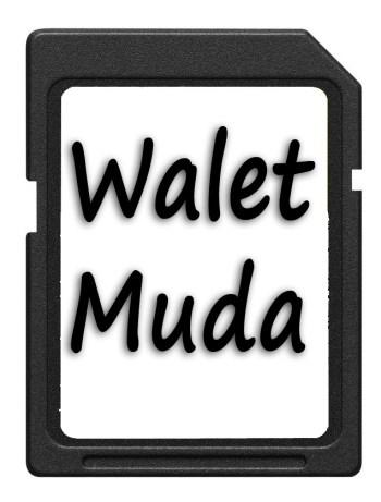 download suara panggil walet muda