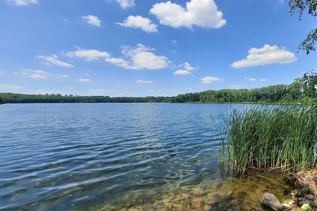 Aus den Tagebaurestlöchern entstehen malerische Seen, wie hier die Schädemulde bei Luckenau