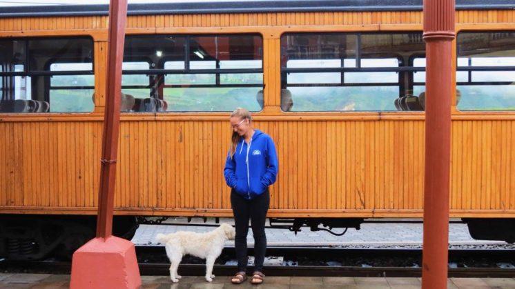 tren ecuador alausi