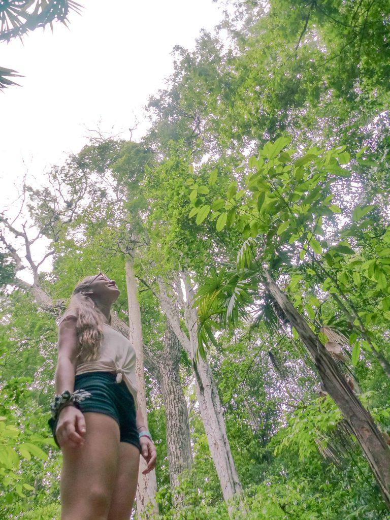 enjoying the jungle surrounding the ruins of tikal