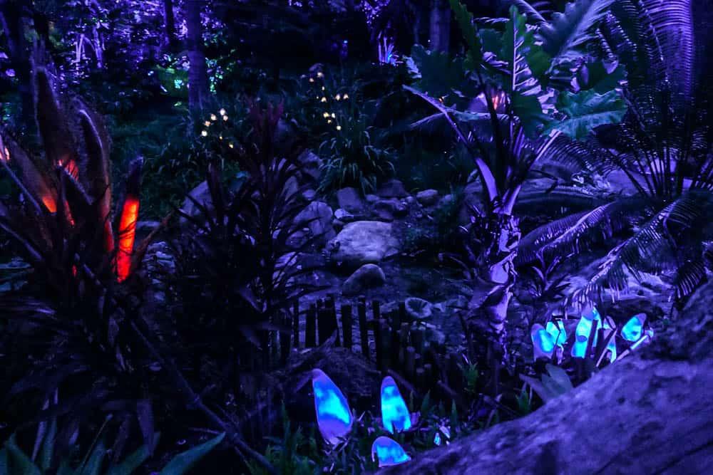 pandora disney animal kingdom bioluminescence
