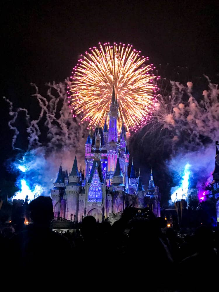 magic kingdom happily ever after fireworks show