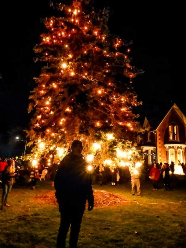 christmas tree lighting at the iron kettle in comber ontario