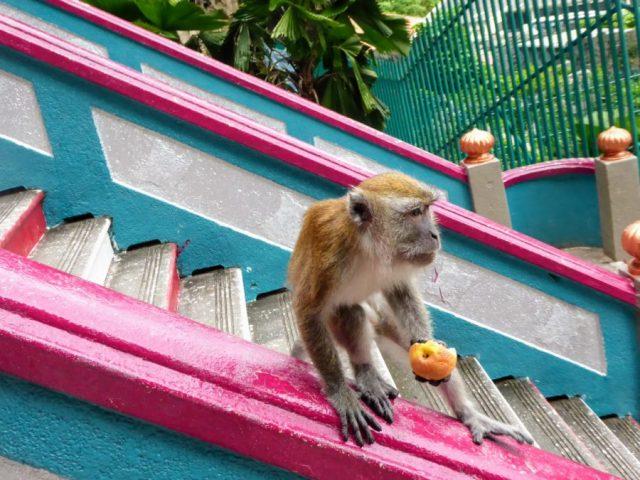 Batu caves Kuala Lumpur KL Malaysia Things to do hindu shrine