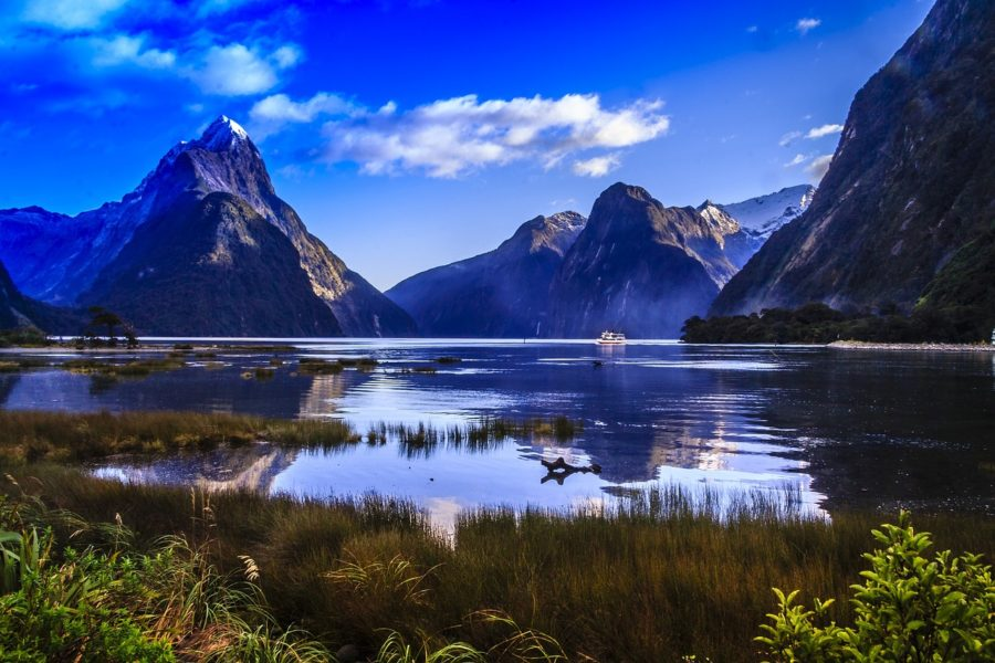 Go Orange: A cruise of Milford Sound from Te Anau