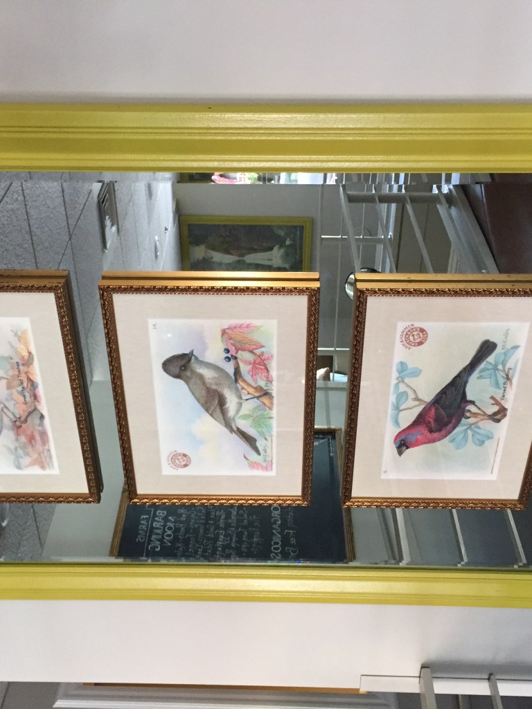bird illustrations in Larks Restaurant