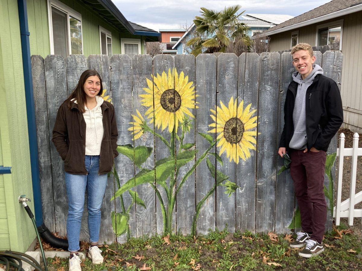 Teen art brightens Orchid Street & Rose Lane