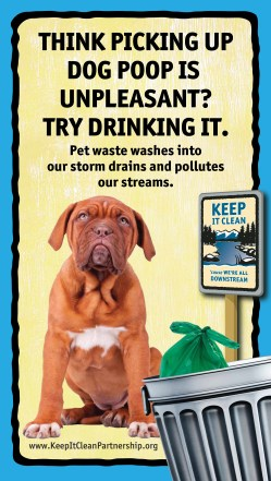Dog-Poop-Stream-Sign