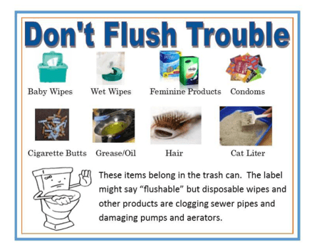 Dont Flush Trouble