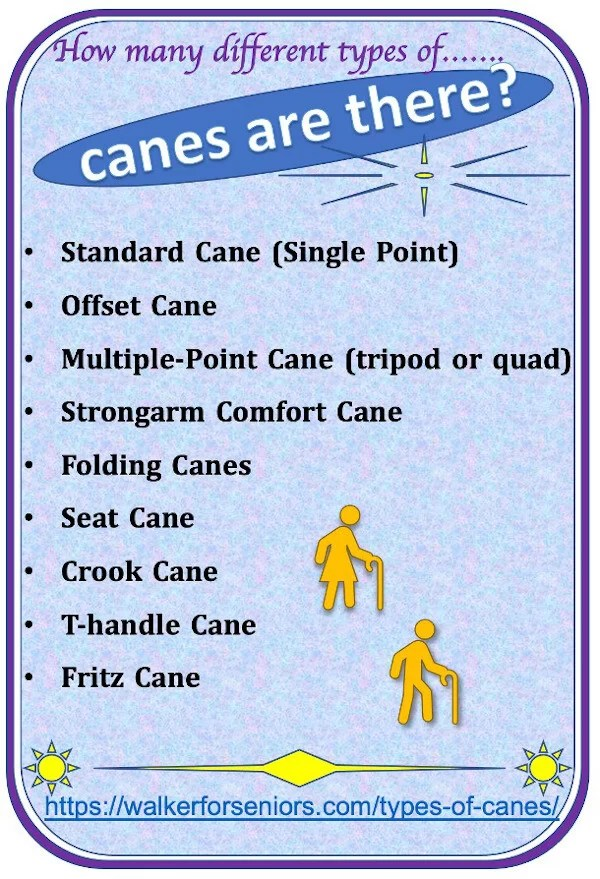 types of canes infographic