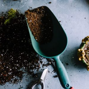Gardening and Growing Needs