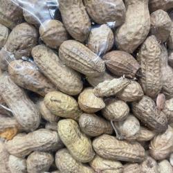 Raw Whole Peanuts