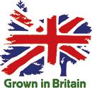 Walkers-logs-Grown-In-Britain-logo