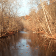 Fall In The Mohican Forest
