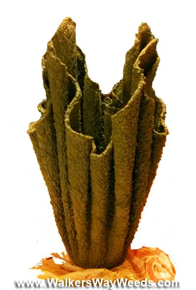 Draped Vase curing