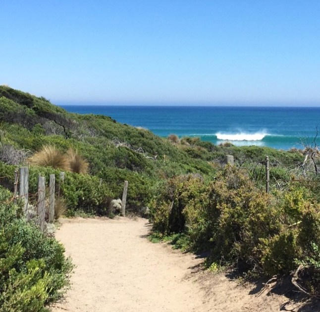 This is on the Mornington Peninsula, one of many amazing ocean beaches just over an hour drive from Melbourne