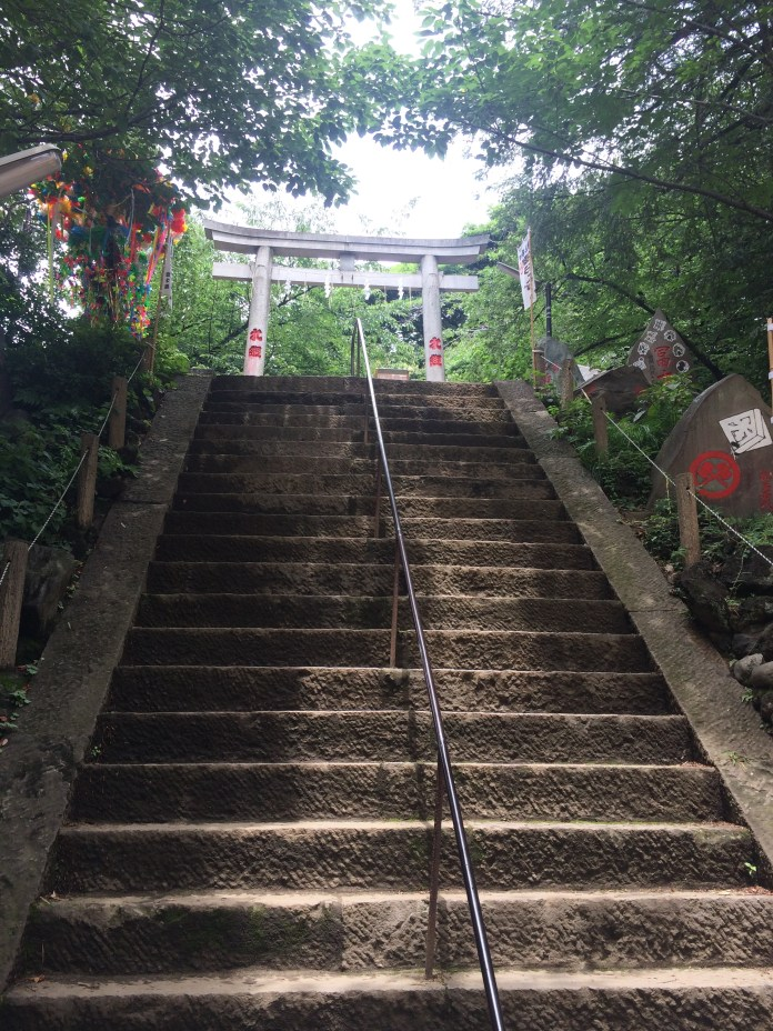 The steps towards the top of Komagome Fuji