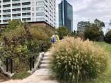 Meguro Sky Garden over Ohashi Junction