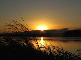 Sunrise in Teganuma Lake