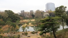 A view of Rikugien Gardens