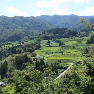 View from Uga Jinja Shrine
