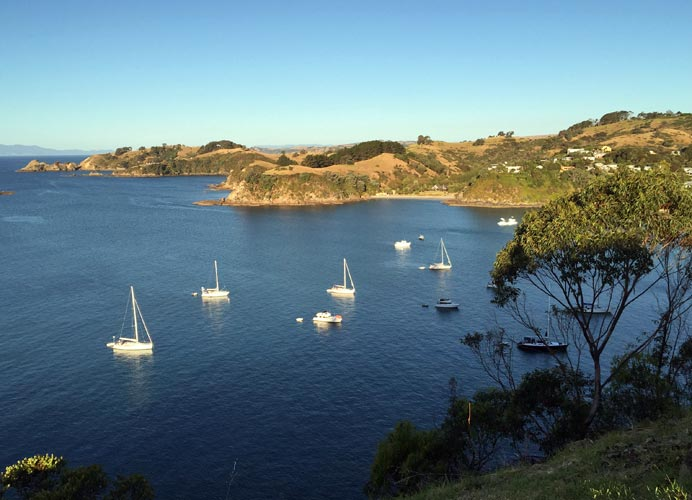 Join us for Te Ara Hura - the new walk around Waiheke Island