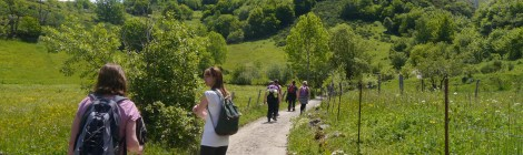 June 2014 mindful walking retreat