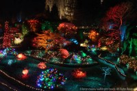 12 Days of Christmas at Butchart Gardens with a Twist