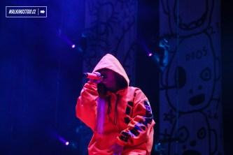Die Antwoord - Lollapalooza 2016 - Domingo 20 de marzo - © walkingstgo - 16