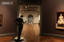 MUSEO NACIONAL DE BELLAS ARTES - COLECCION - 01-02-2016 - 15