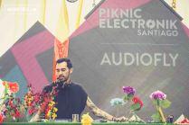 Piknic Electronik en el Parque de las Esculturas de Santiago, 19.12.2015 - 8
