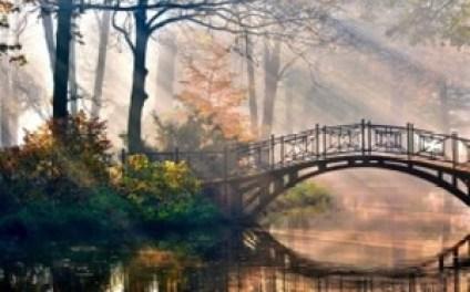 bridge water_800_499