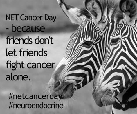 Third NET Cancer Day Social Mediathon | Walking with Jane